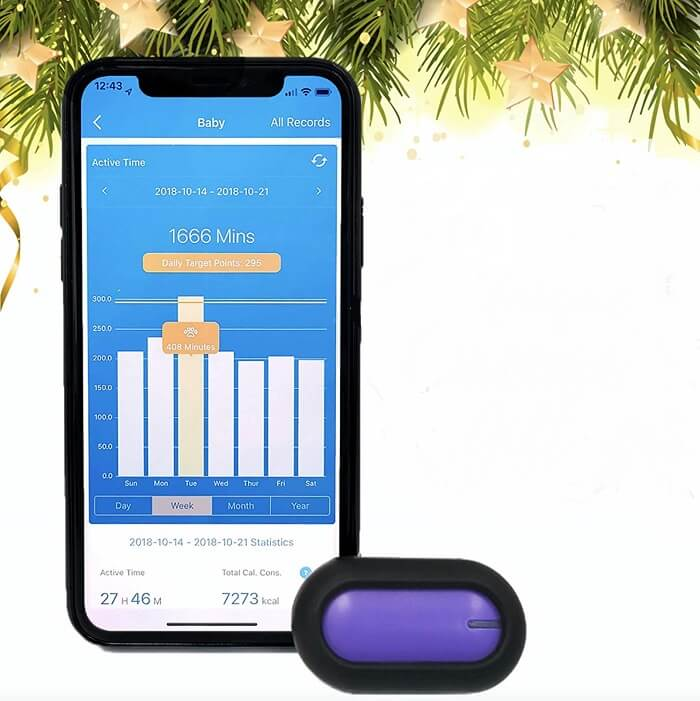 petble pet tracking device